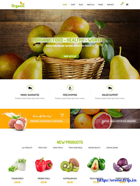 AmyOrganic-Organic-WordPress-Theme