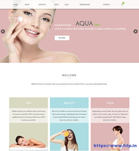 Aqua-Spa-&-Beauty-WordPress-Theme