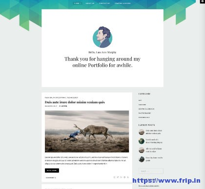 Ares-Murphy-Portfolio-WordPress-Theme