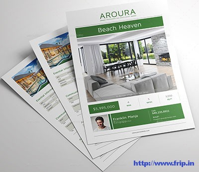 Aroura-Real-Estate-Flyer
