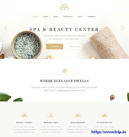 Aviana-Wellness-&-Spa-WordPress-Theme