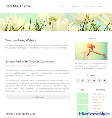 Beautiful-Pro-WordPress-Theme