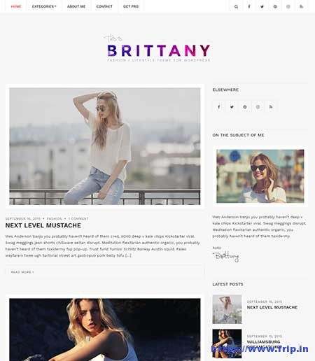 Brittany-light-free-WordPress-Theme