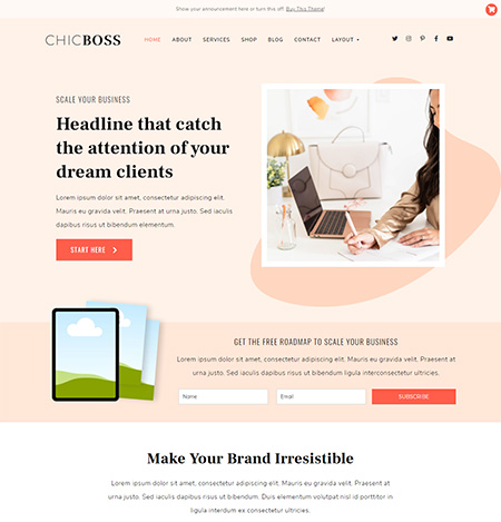 ChicBoss-WordPress-Theme