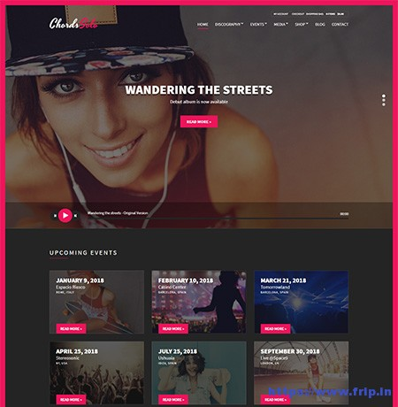 Chords-Music-Artist-WordPress-Theme