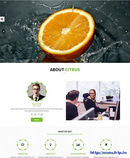 Citrus-WordPress-One-Page-Theme