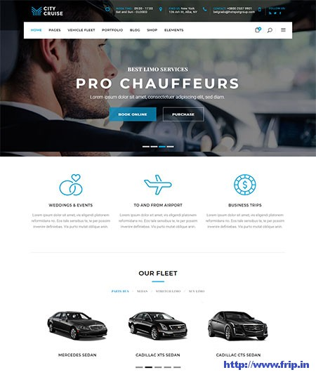 City-Cruise-Car-Rental-WordPress-Theme