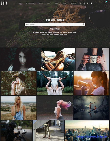 WordPress Stock Photography Themes