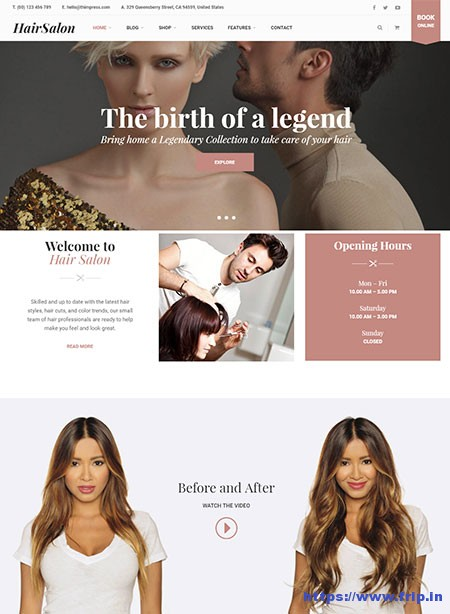 Hair-Salon-WP-WordPress-Theme