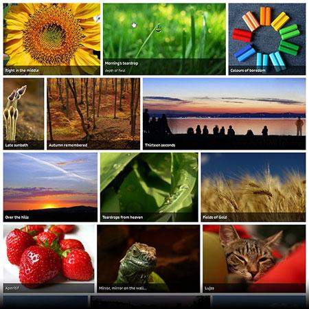 Justified-Image-Grid-WordPress-Gallery-Plugin