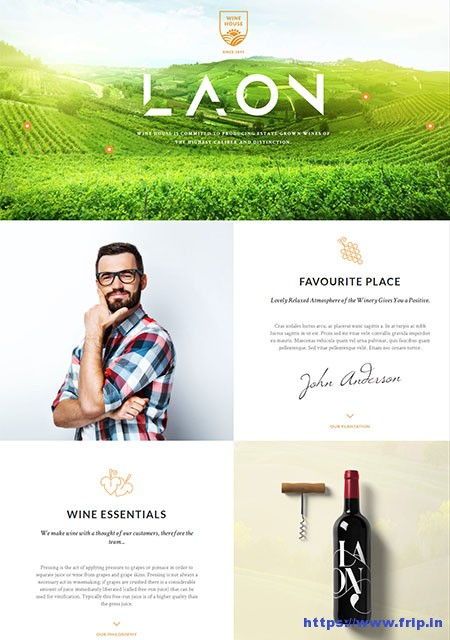 Laon-Wine-Shop-WordPress-Theme