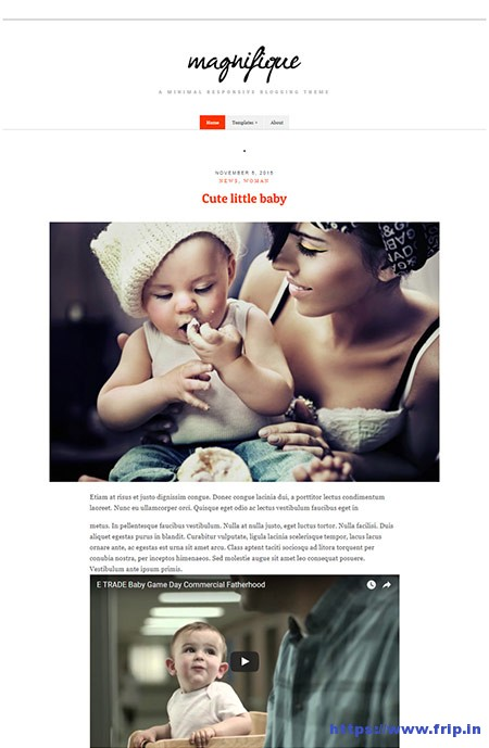 Magnifique-WordPress-Theme