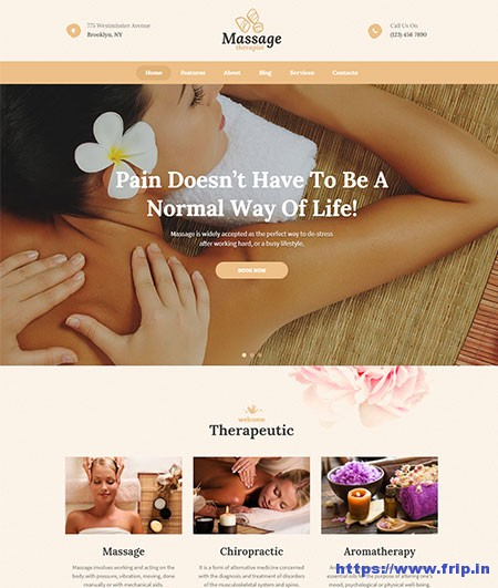 Massage-Therapist-&-Spa-Salon-Theme