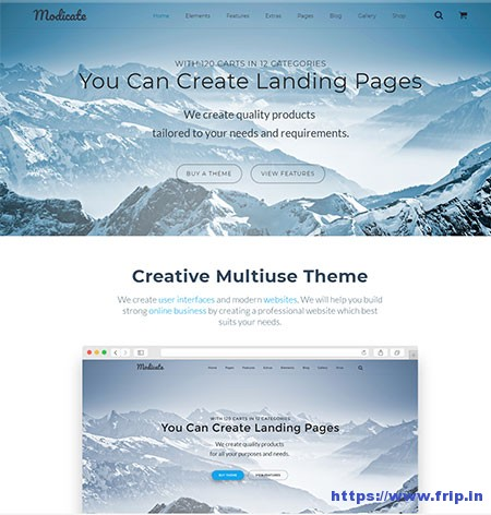 Modicate-Multipurpose-Website-Template
