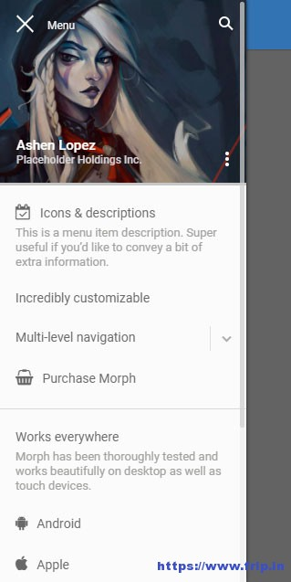 Morph-Flyout-Mobile-Menu-for-WordPress