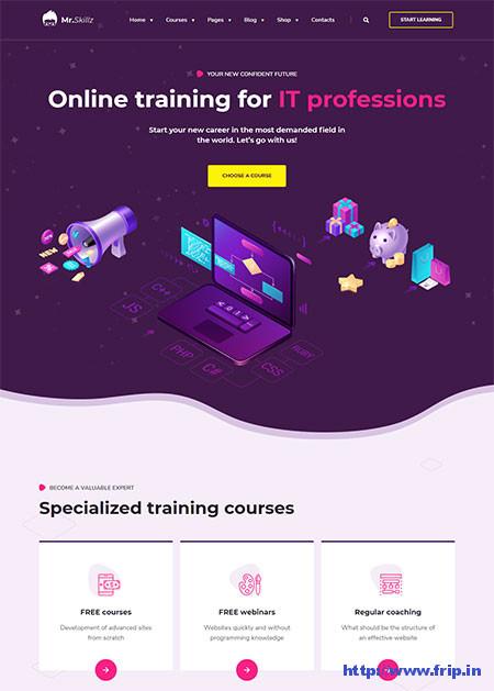 MrSkillz-Online-Course-WordPress-Theme