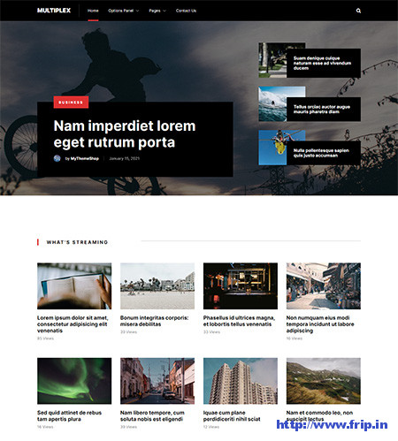 Multiplex-WordPress-Theme