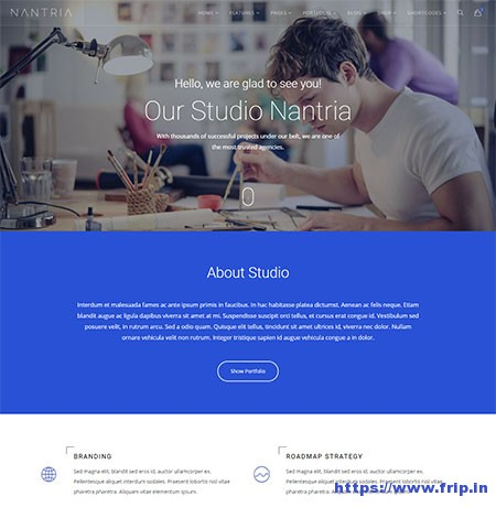 Nantria-Multi-Purpose-HTML5-Template