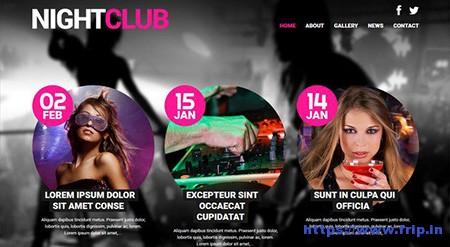 Night-Club-Euphoria-WordPress-Theme