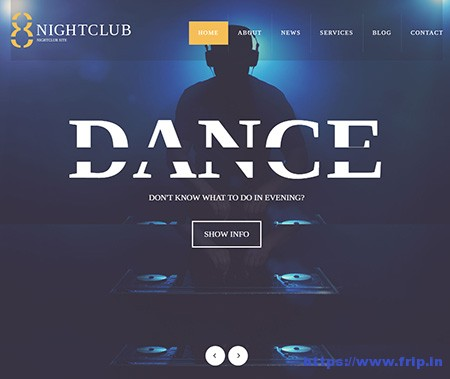 night club wordpress themes