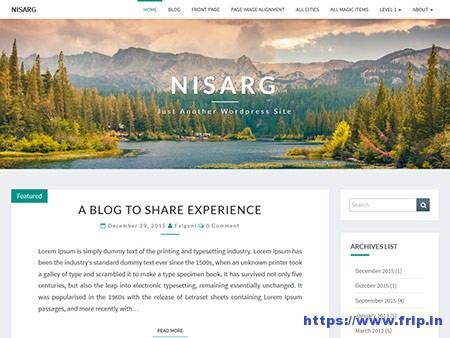 Nisarg-WordPress-Theme