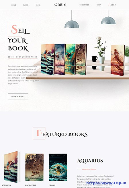 Odrin-Book-Selling-WordPress-Theme