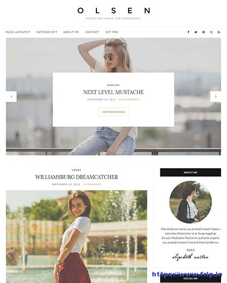 Olsen-Light-free-WordPress-Theme