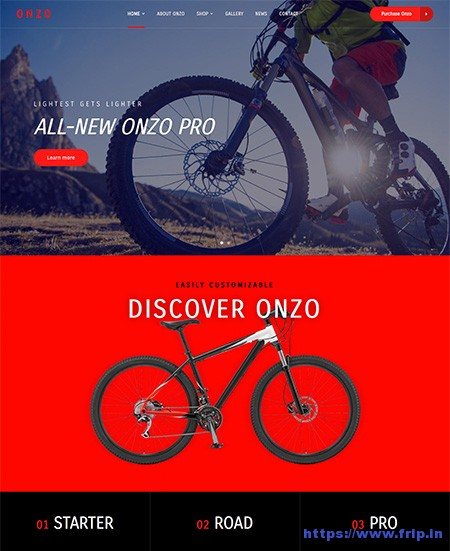Onzo-Single-Product-WordPress-Theme