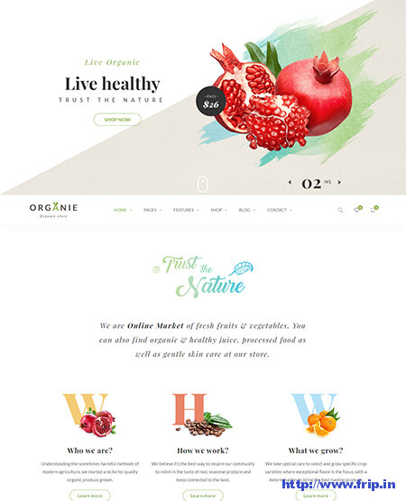 Organie-Organic-Store-WordPress-Theme