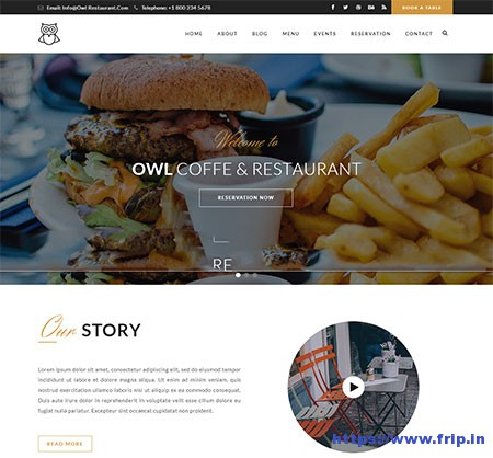 Owl-Restaurant-&-Cafe-WordPress-Theme