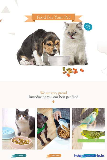 Peto-Pet-Shop-WooCommerce-Theme