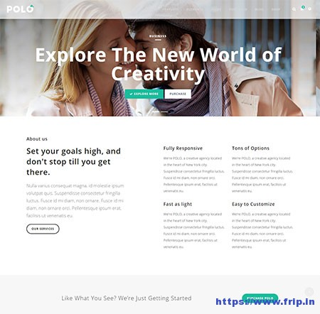 Polo-Multi-Purpose-HTML5-Template