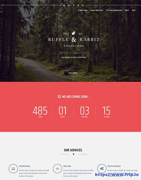 Rabbit-Coming-Soon-WordPress-Theme