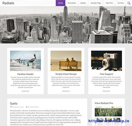 Radidate-free-Personal-Blog-WordPress-Theme