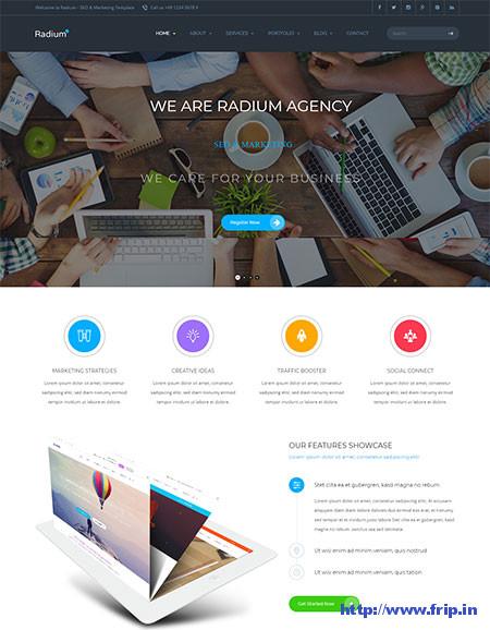 Radium-SEO-WordPress-Theme