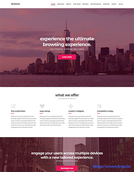 Roxima-One-Page-WordPress-Theme