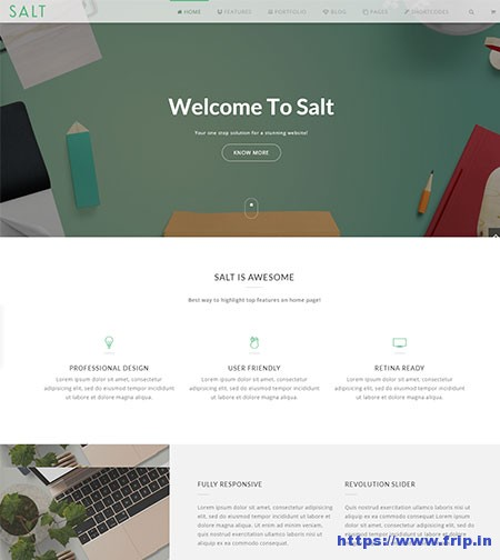 Salt-Multi-Purpose-Website-Template