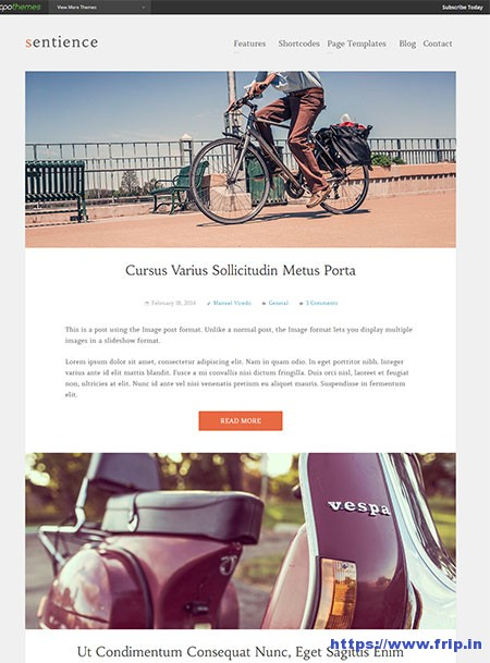 Sentience-Blogging-WordPress-Theme