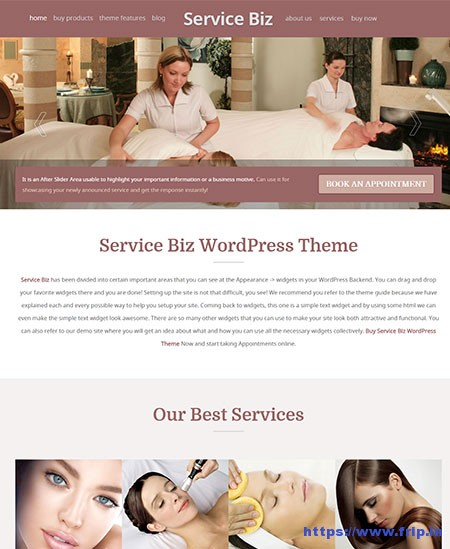 Service-Biz-Appointment-Booking-WordPress-Theme