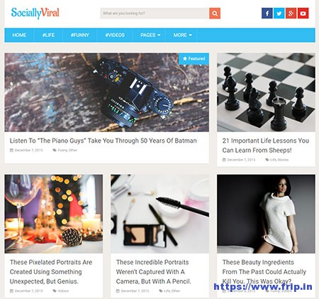 SociallyViral-free-WordPress-Theme