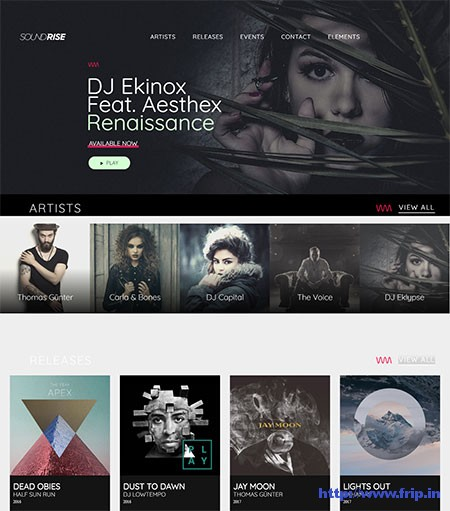 SoundRise-Multipurpose-Music-WordPress-Theme