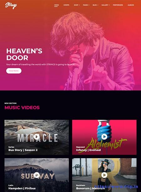 Strings-Music,-Band,-Artist-&-Event-WordPress-Theme