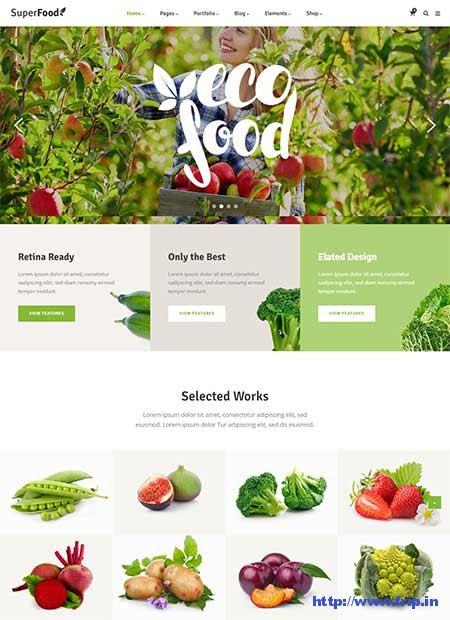 Superfood-Organic-Food-WordPress-Theme