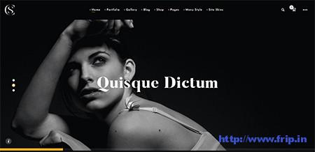Thecs-Portfolio-WordPress-Theme