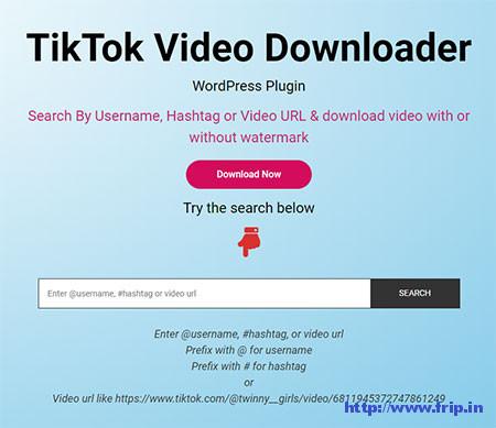 TikTok-Video-Downloader-Plugin