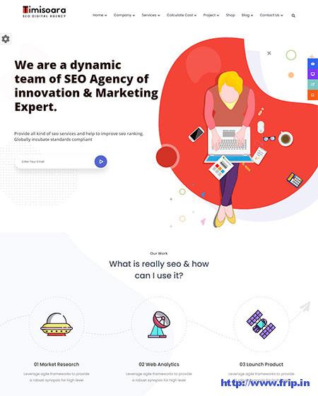 Timisoara-Digital-Marketing-Theme