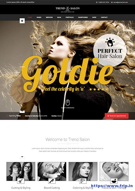 Trend-Salon-Haircut-Hair-Salon-&-Hairdresser-Theme