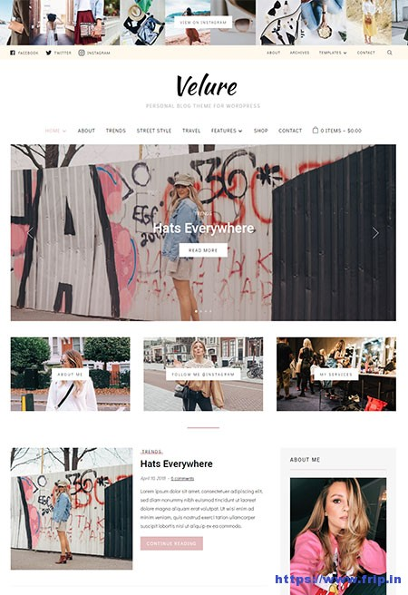Velure-Fashion--Lifestyle-WordPress-Theme