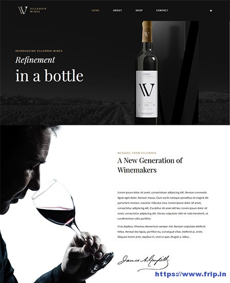 Villenoir-Winery-&-Wine-Shop-WordPress-Theme