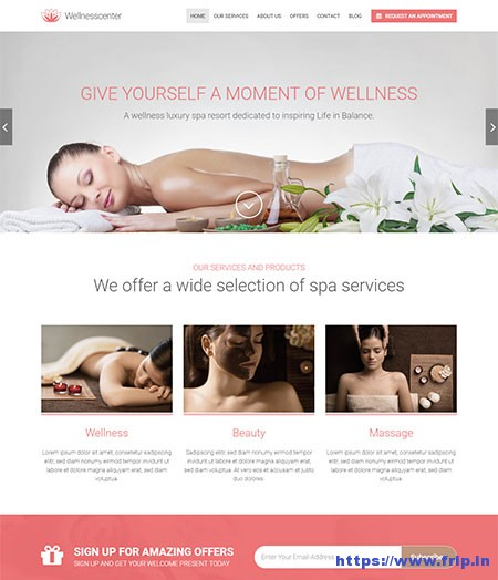 Wellness-Center-Beauty-WordPress-Theme